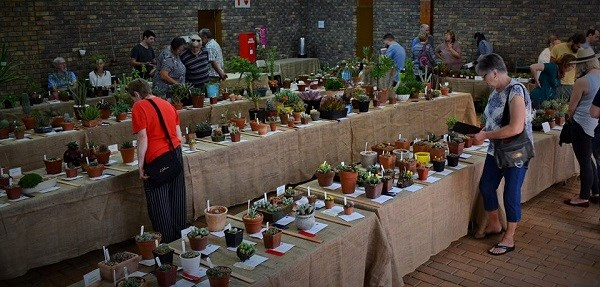 JSS Autumn Show & Plant Sale