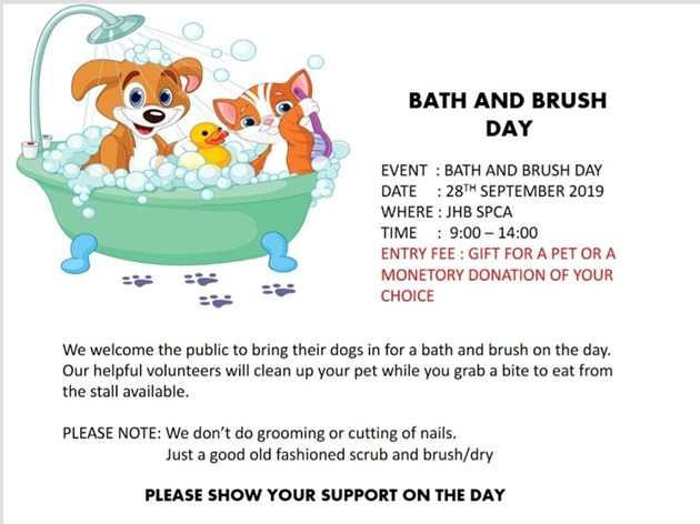 Bath and Brush Day