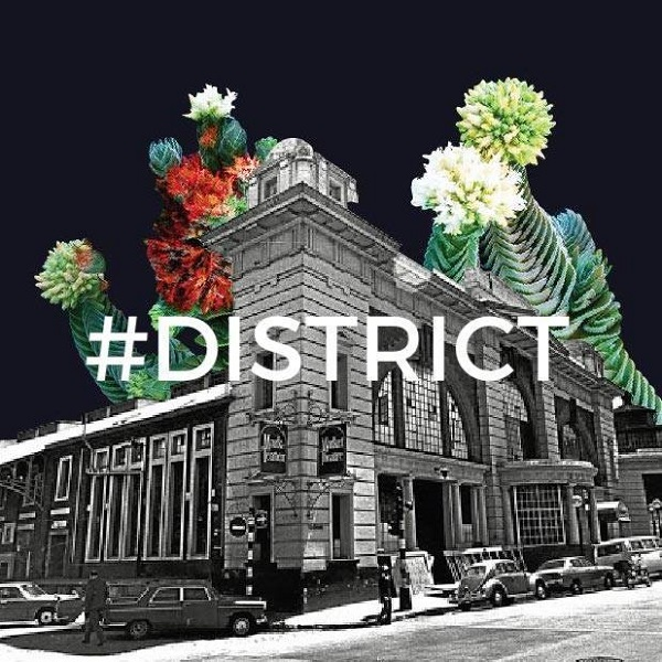 District A Global Street Festival In Newtown